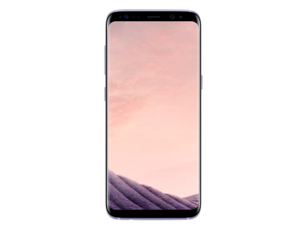 Samsung G950F/DS Galaxy S8 64Gb, Orchid Grey